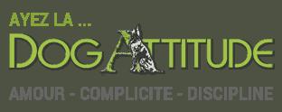 logo_dogattitude